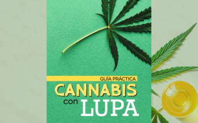 Cannabis con lupa